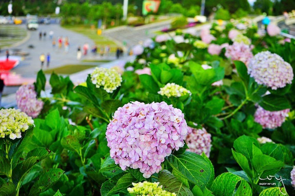 大叻市區景點,春香湖