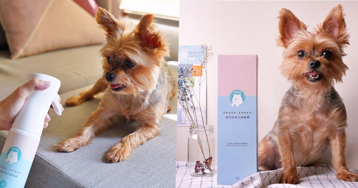 寵物除臭噴霧推薦,貓狗的尿味和身體臭味,用「阿貝家ABAE+」食用級除臭噴劑搞定!