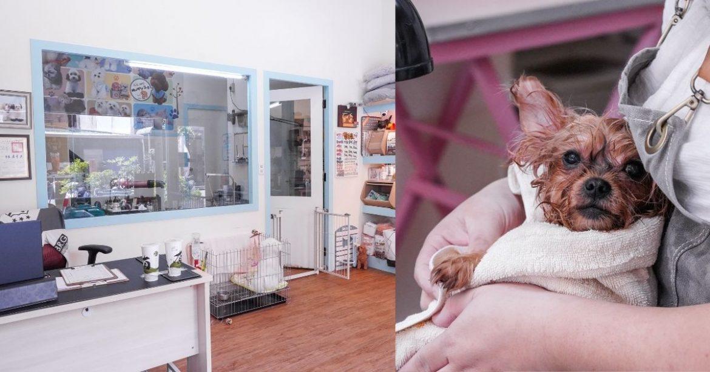 Happy Dog寵物精品沙龍 |台中南屯寵物美容推薦,半開放式的美容空間,讓爸媽和毛孩都能夠放鬆自在!