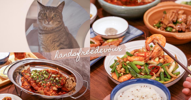 漢食福利的貓 |貓奴天堂!台中勤美療癒餐廳,萌貓陪你吃飯,招牌川菜料理,香辣過癮好滋味!