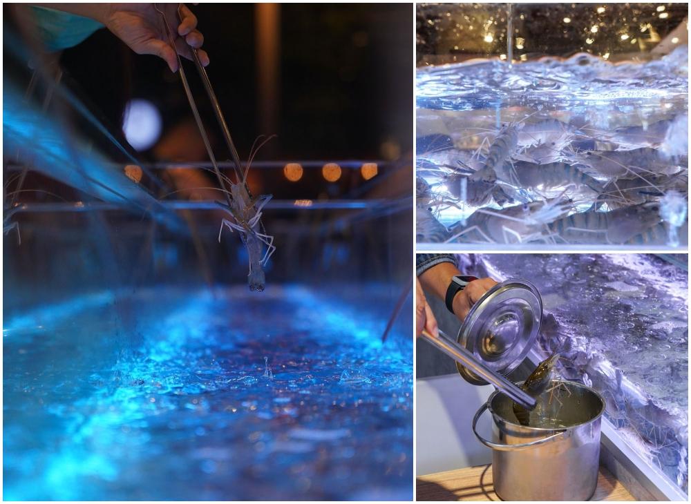 有GO蝦  台中流水蝦吃到飽,泰國蝦玻璃水道就在桌旁,還有美國沙朗牛、天使紅蝦、干貝爽爽吃!