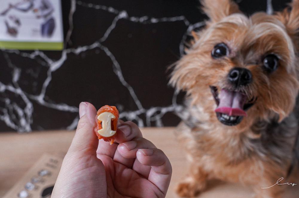 寵物潔牙還在潔牙骨嗎?寵物刷牙神器就靠傑凱3D潔牙指套!初學者輕鬆幫寵物口腔清潔~