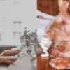 台灣首支專業級 寵物情緒益生菌 快樂奇毛子 PET CALM,消除毛孩焦慮的壓力又幫助食慾!