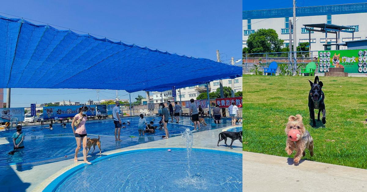 狗老大寵物渡假會館 |桃園寵物友善餐廳,超大草皮、寵物泳池,還有寵物鮮食,讓狗狗盡情打滾放電!