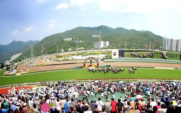 【2017年香港】熱血沸騰的賽馬與香港在地文化 || 沙田賽馬場