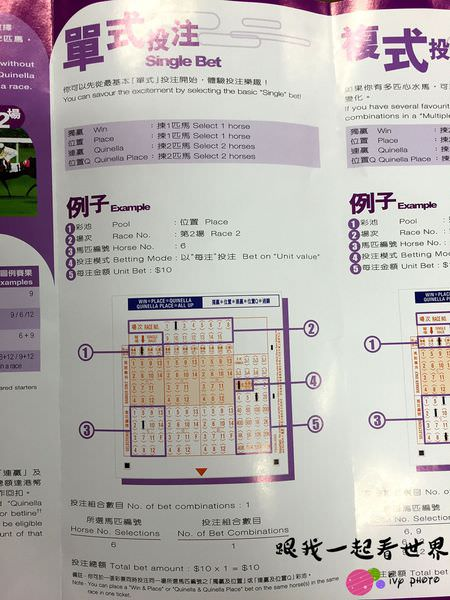 IMG_8464_结果.JPG